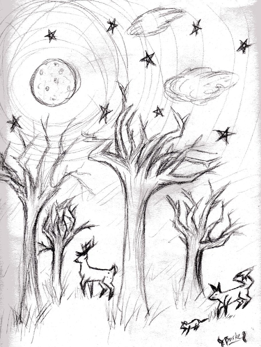 911x1211 Moon, Stars And Trees By Remusmoony