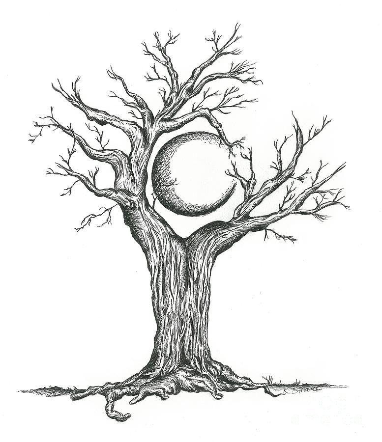 777x900 This drawing is of a crescent moon surrounded by the tree and
