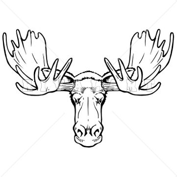 361x361 Explore Tac Tatts Moose Head Drawing And More Moose Clip Art