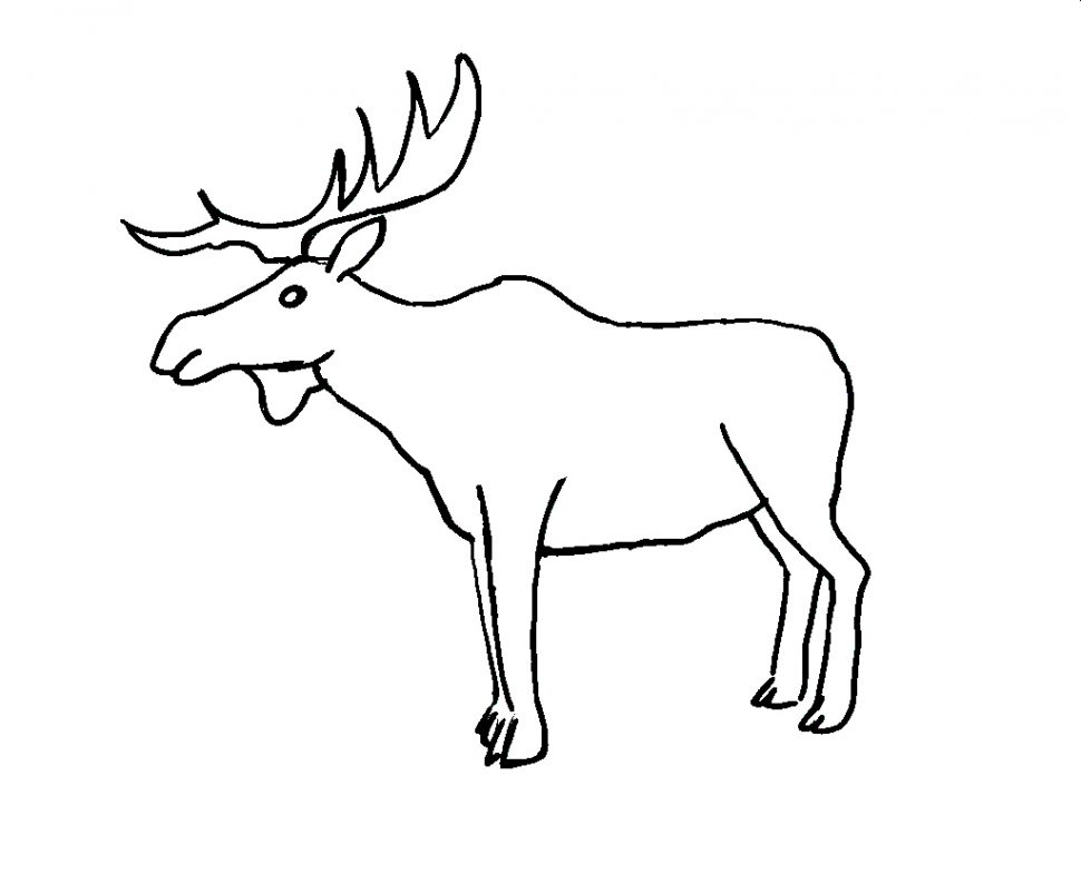 970x785 Coloring Pages Appealing Moose Coloring Pages Baby Page Moose