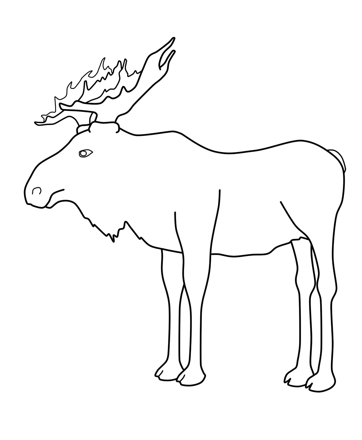 moose drawing at getdrawings com free for personal use moose