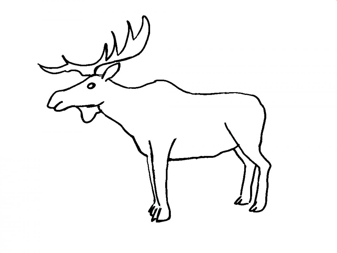 1280x960 Elk Coloring Book Pages Cartoon Moose