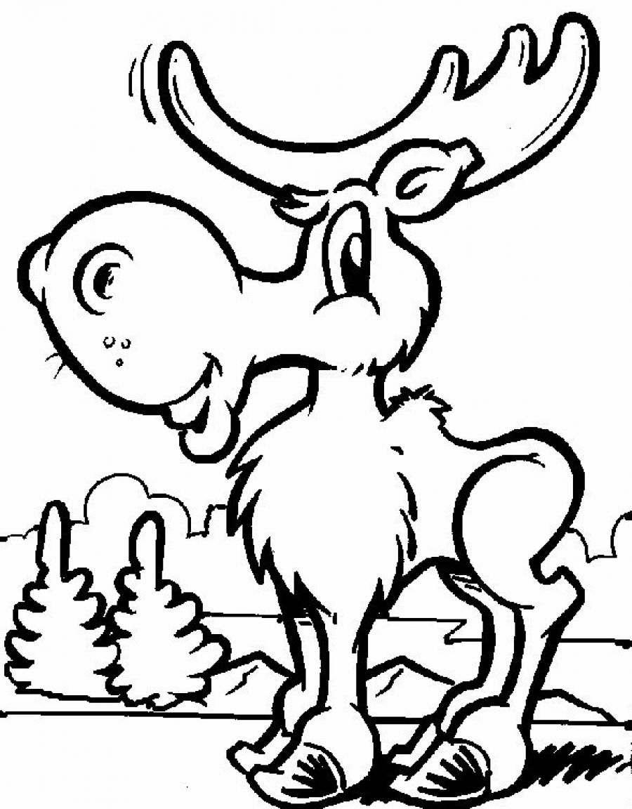 900x1152 Free Printable Moose Coloring Pages For Kids