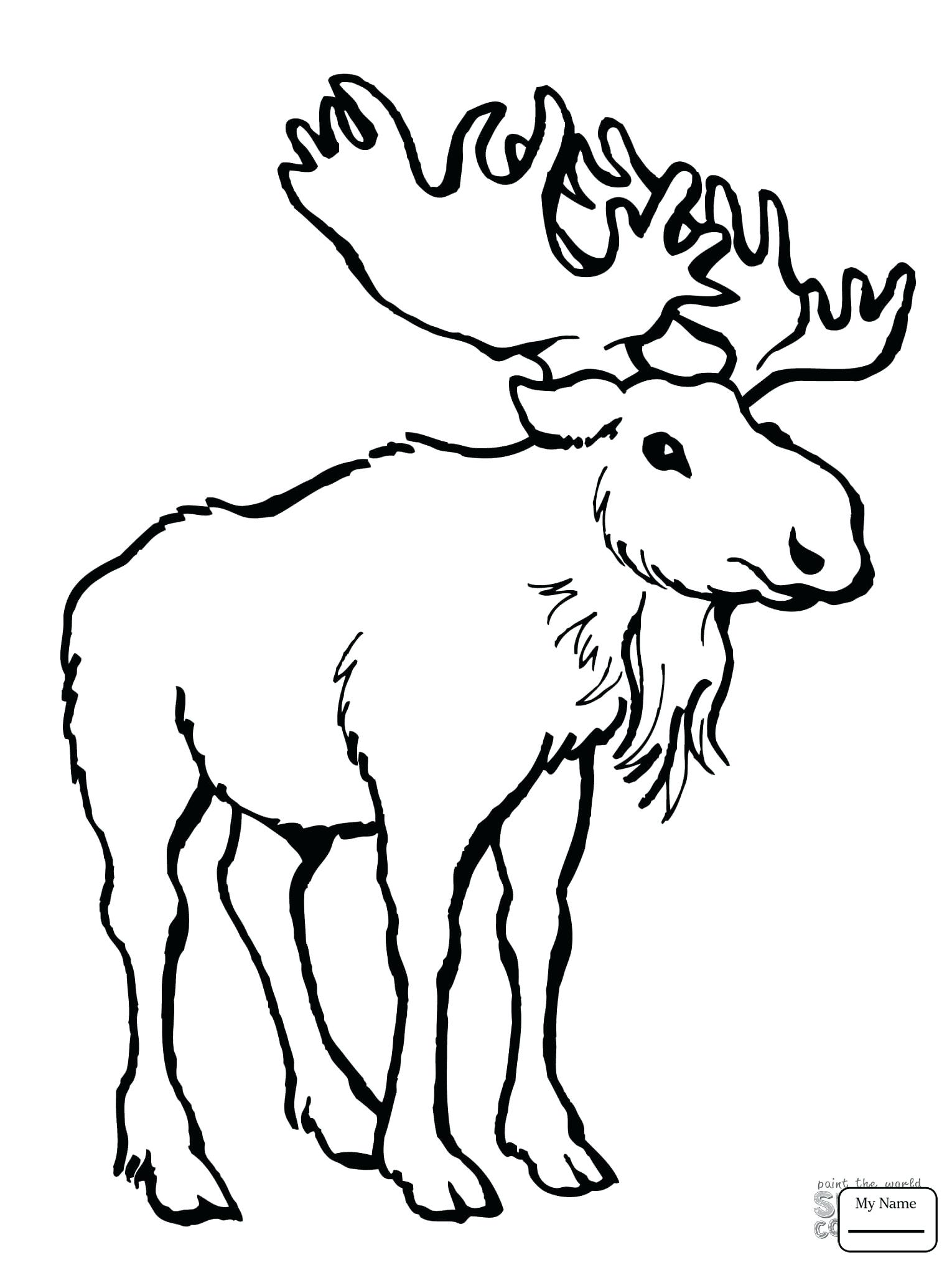 1530x2040 Coloring Moose Coloring