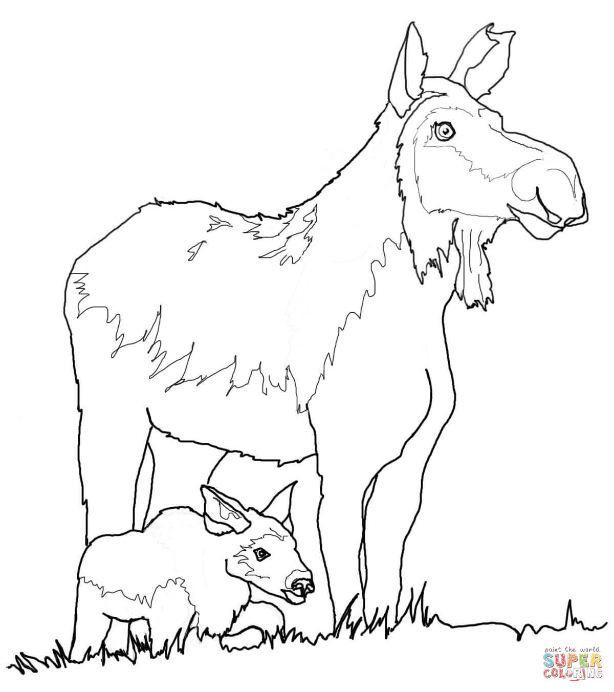 Moose Drawing For Kids at GetDrawings.com | Free for personal use ...