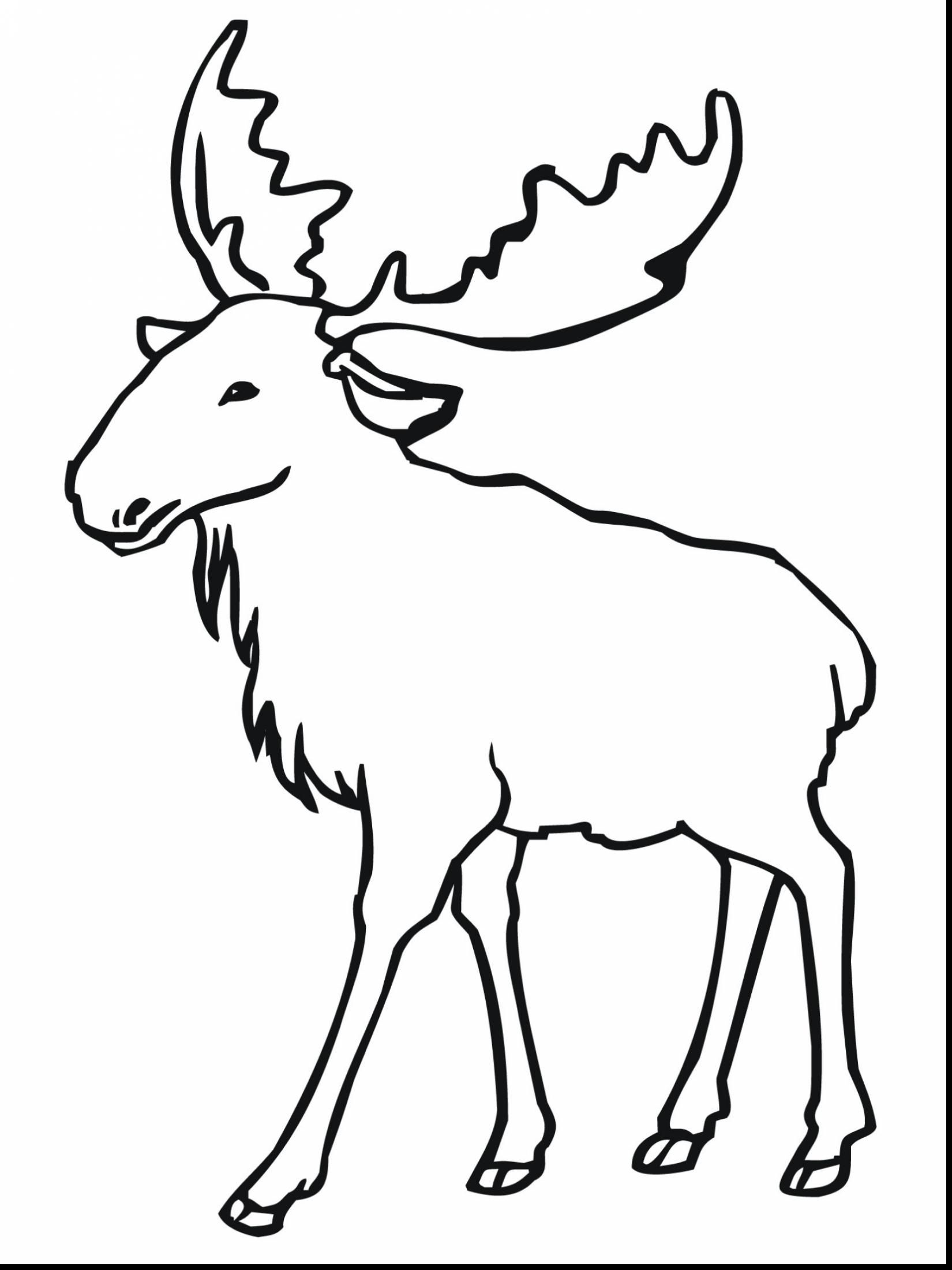 1650x2200 Fantastic Moose Coloring Page Pages For Kids With Moose Coloring