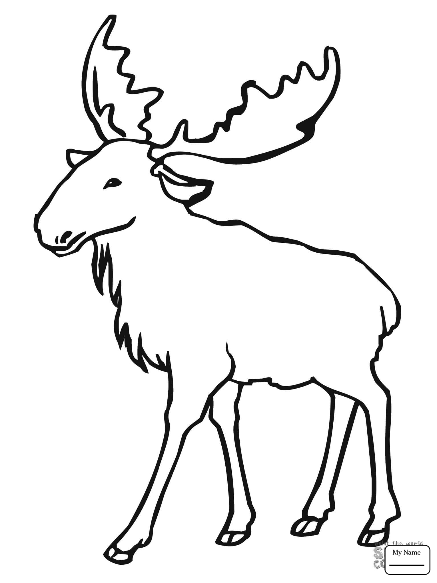 1530x2040 Mammals Baby Moose Moose Coloring Pages For Kids