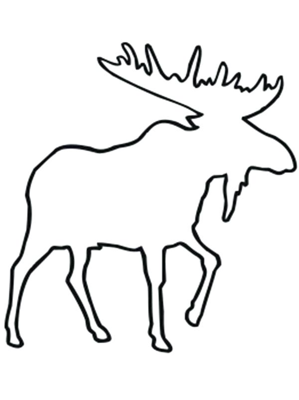 600x802 Moose Coloring Pages Click To See Printable Version Of Moose