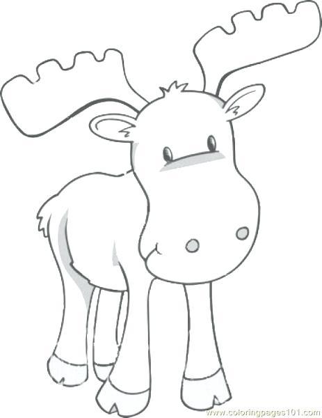 463x600 Elk Coloring Pictures Good Elk Coloring Pages With Moose Realistic