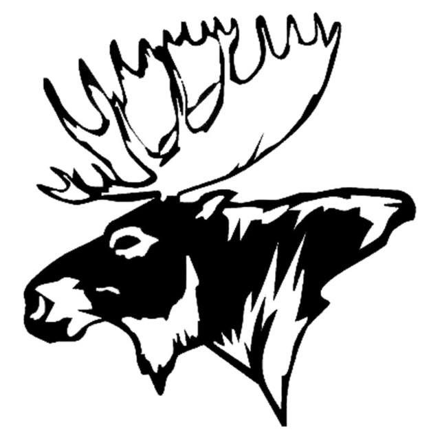 Moose Head Drawing