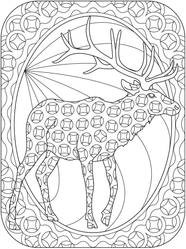 650x870 185 Best Animaux Images On Coloring For Adults, Pencil