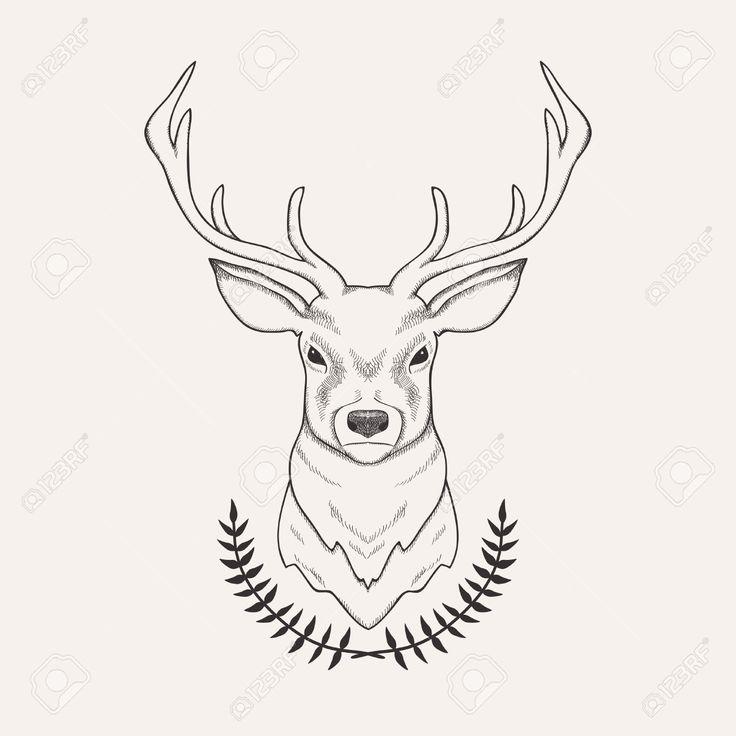 736x736 Pictures Deer Head Drawing,