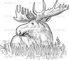 236x203 Rabbit Moose Buns, Rabbit And Zen
