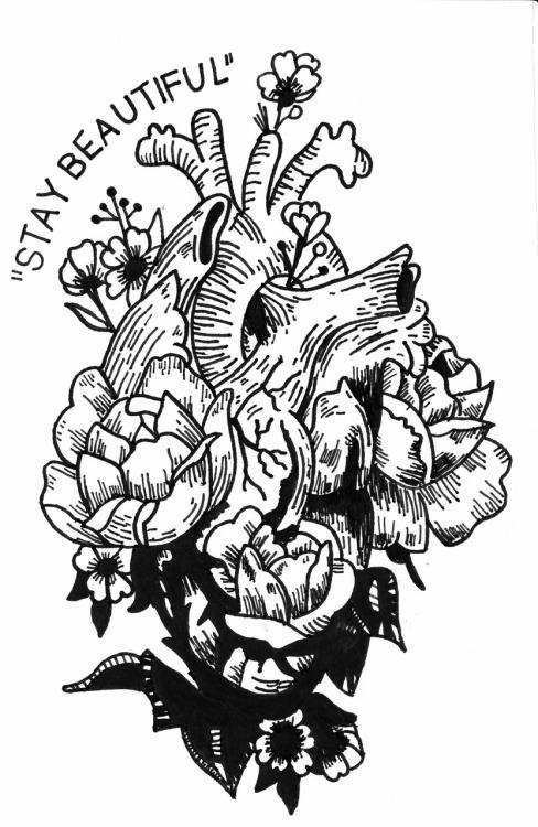 488x750 Moose Drawing Tumblr