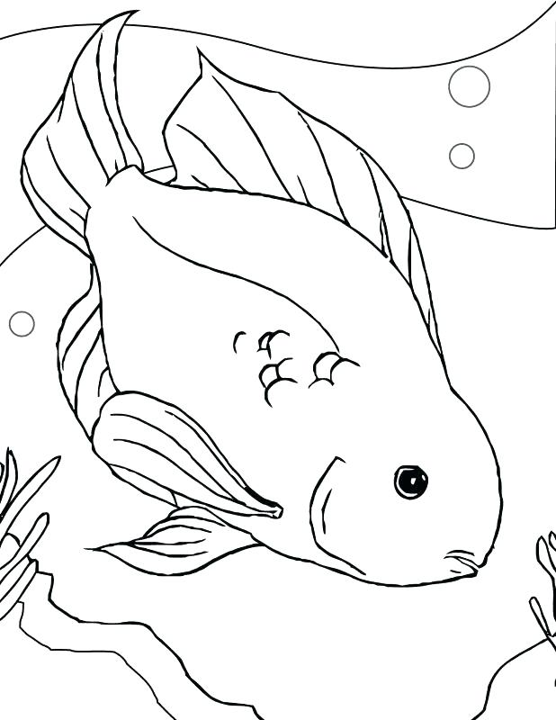 618x800 Eel Coloring Page Eel Black And White 1 Gulper Eel Coloring Page