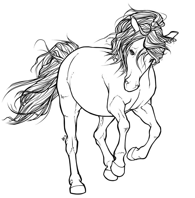 morgan horse drawing at getdrawings com free for personal use