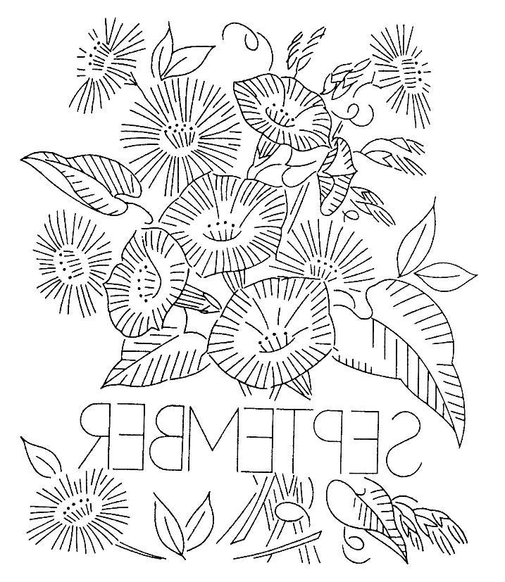 717x827 Inkspired Musings Aster September Birthday Flower