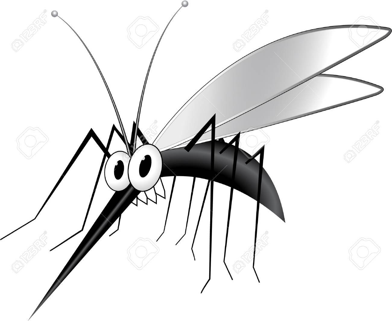 1300x1064 Mosquito Royalty Free Cliparts, Vectors, And Stock Illustration