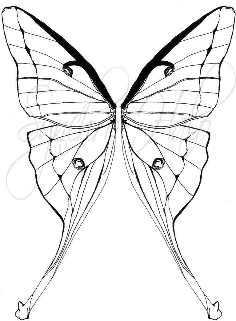 767x1041 Luna Moth Tattoo Commission By Synchro Halo