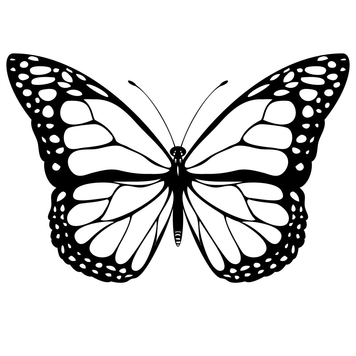 1200x1200 Book Winter Moth Clipart