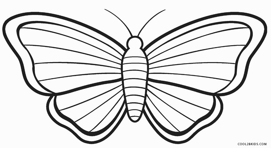 950x522 Butterfly Coloring Pages For Kids Colouring In Funny Draw