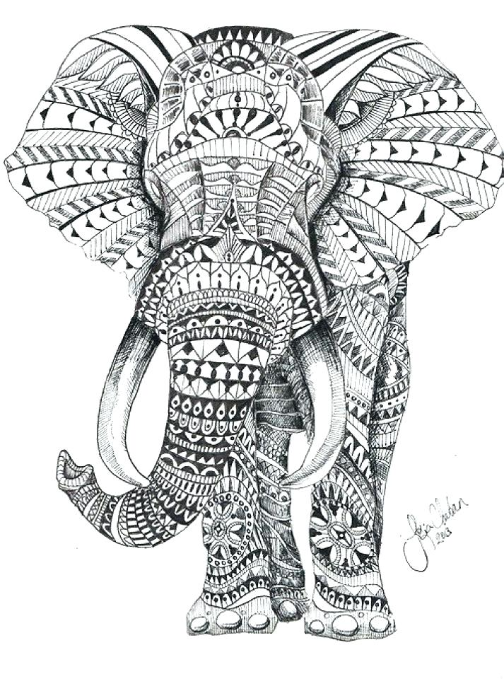 713x960 Good Elephant Color Pages Best Of Coloring To Print Free Animal