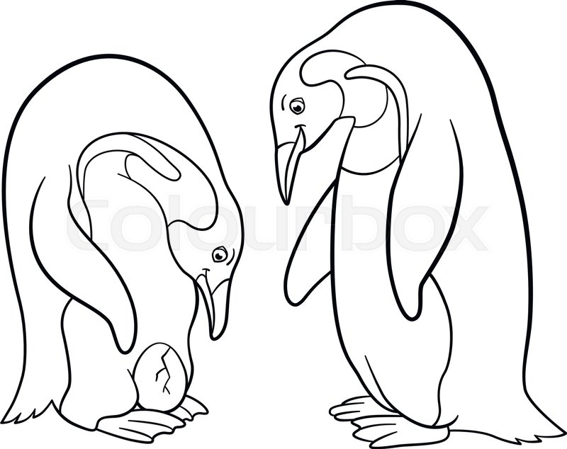 800x634 Coloring Pages. Mother And Father Penguin Looks