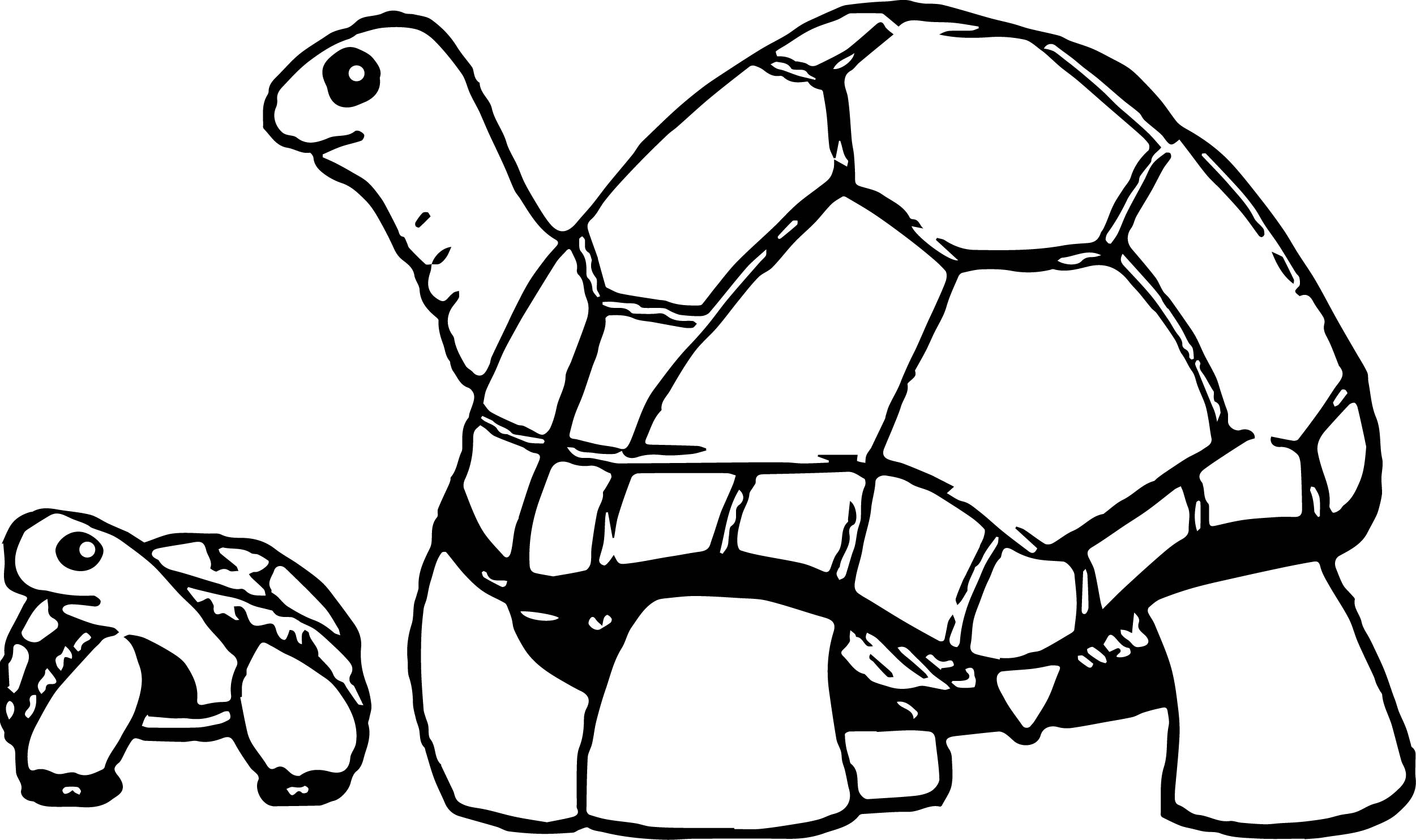 mommy turtle coloring pages - photo#11