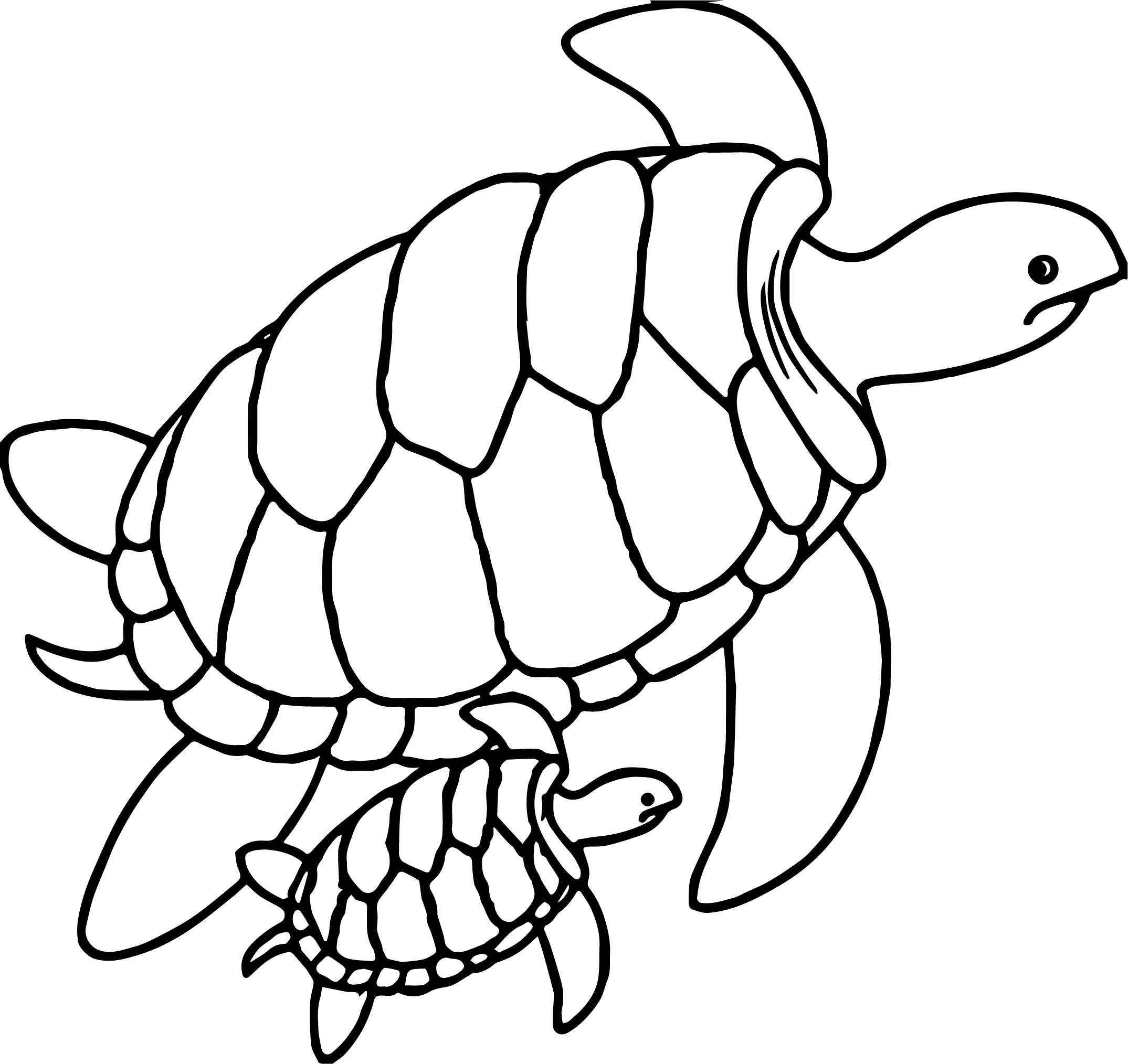 2149x2028 Baby Turtle Drawing Cute Sea Turtle Mother And Baby Sea Turtles