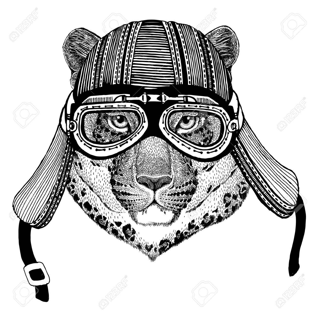 1300x1300 Wild Cat Leopard Cat O Mountain Panther Hand Drawn Image Of Animal