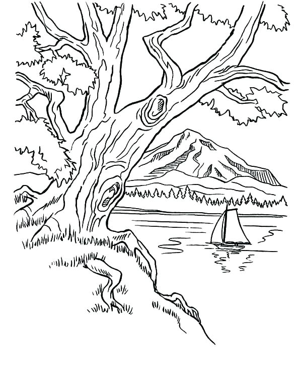 600x734 Mountain Coloring Pages Arbor Day Trees On Mountains Area Bike