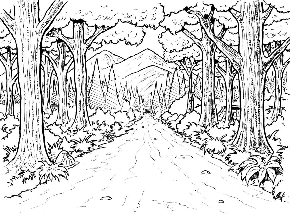 1008x744 Printable Nature Forest With Mountain And Road Also Tree Coloring