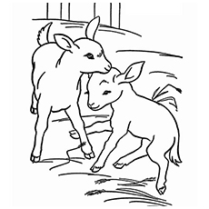230x230 Top 25 Free Printable Goat Coloring Pages Online