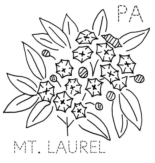611x640 Pennsylvania Mountain Laurel Pennsylvania, Embroidery And Patterns