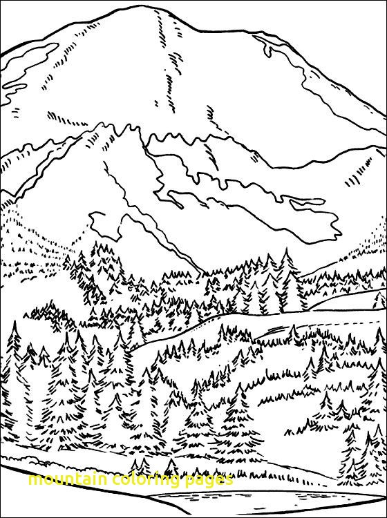 560x750 Mountain Coloring Pages With Image Result For Seaweed Outline