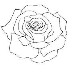 230x219 Pictures Rose Picture Out Line Drawing,