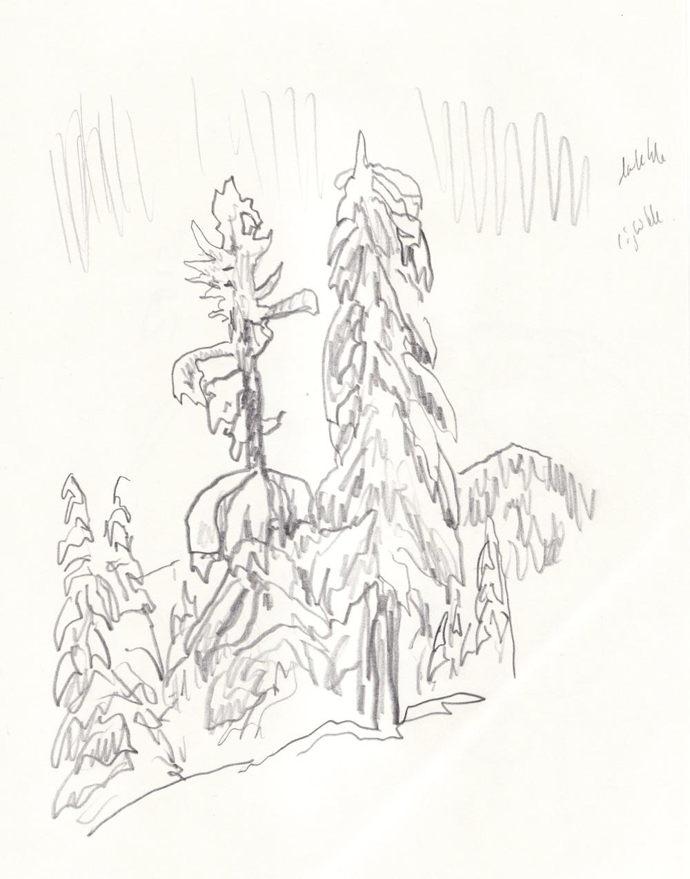 1000x1274 Drawings Alec Blair