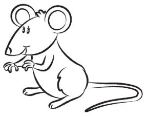 285x228 How To Draw A Mouse Howstuffworks