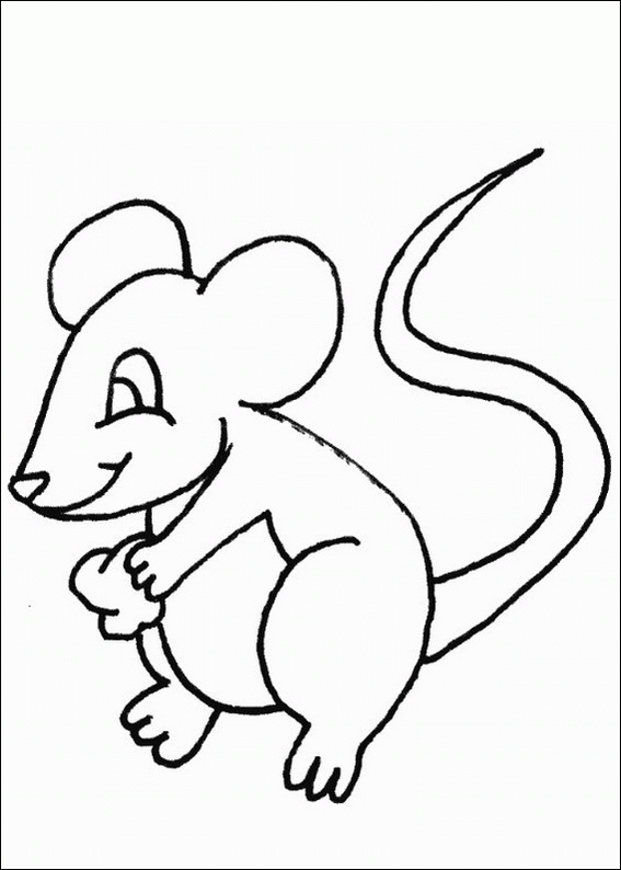 567x794 Mouse