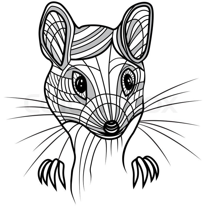 800x800 Rat Or Mouse Head Vector Animal Illustration For T Shirt. Sketch