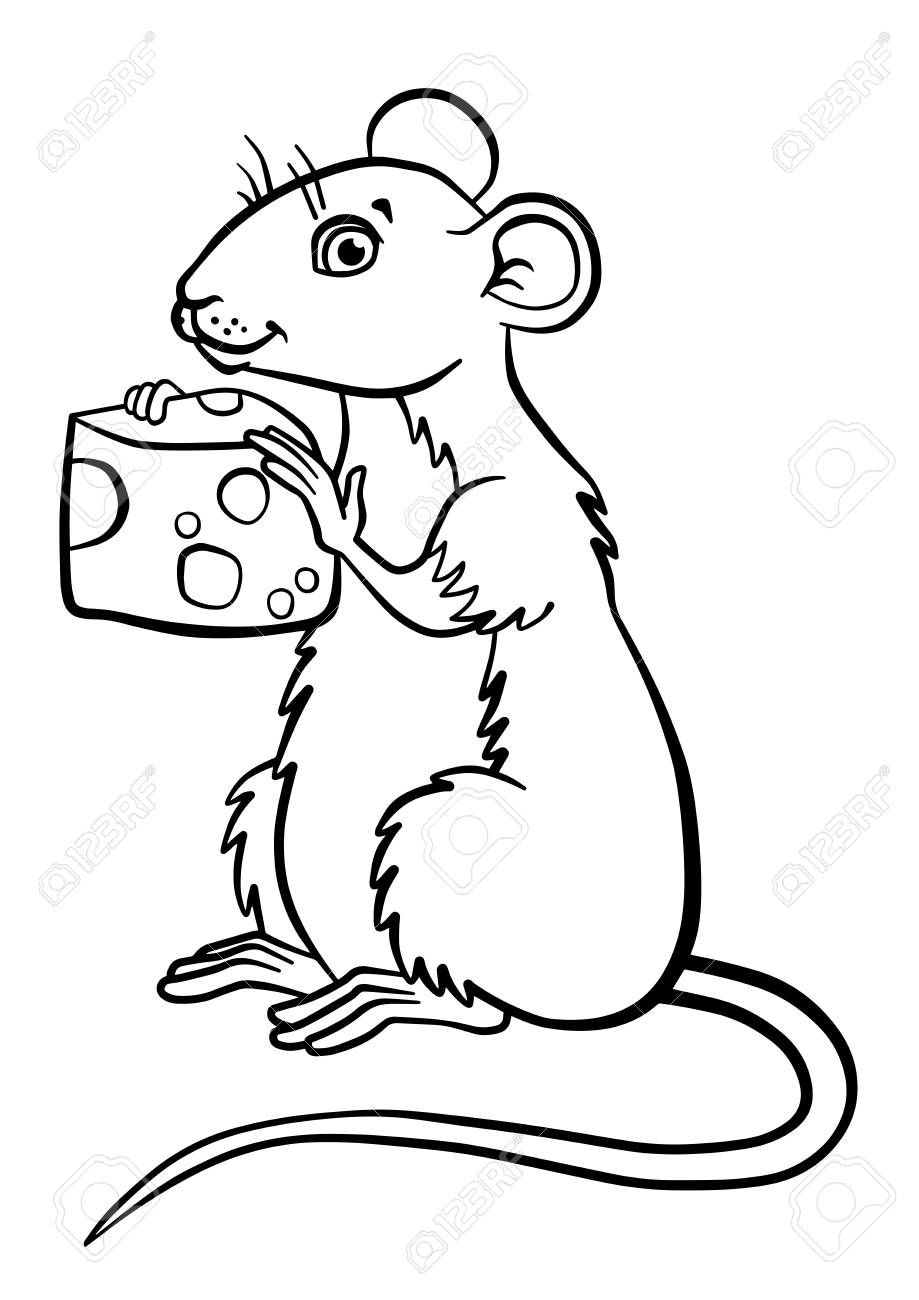 919x1300 Coloring Pages. Animals. Little Cute Mouse Holds Cheese In