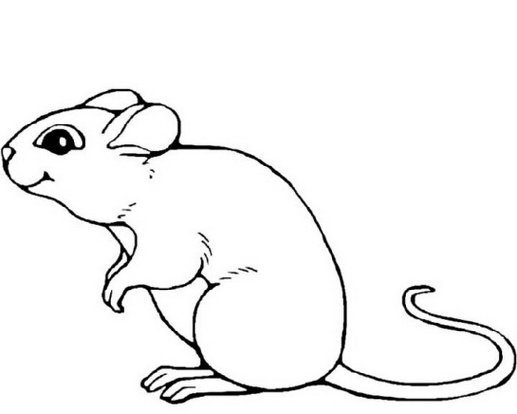 Drawing Lines With Mouse In Java : Mouse animal drawing at getdrawings free for