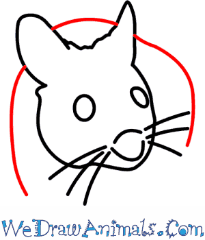 300x350 How To Draw A Wood Mouse