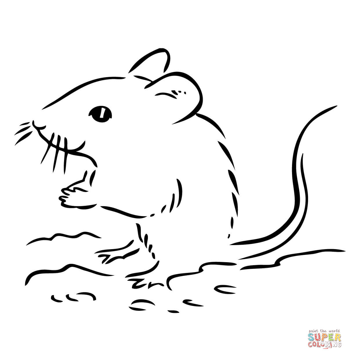 1200x1224 Drawn Rodent Deer Mouse