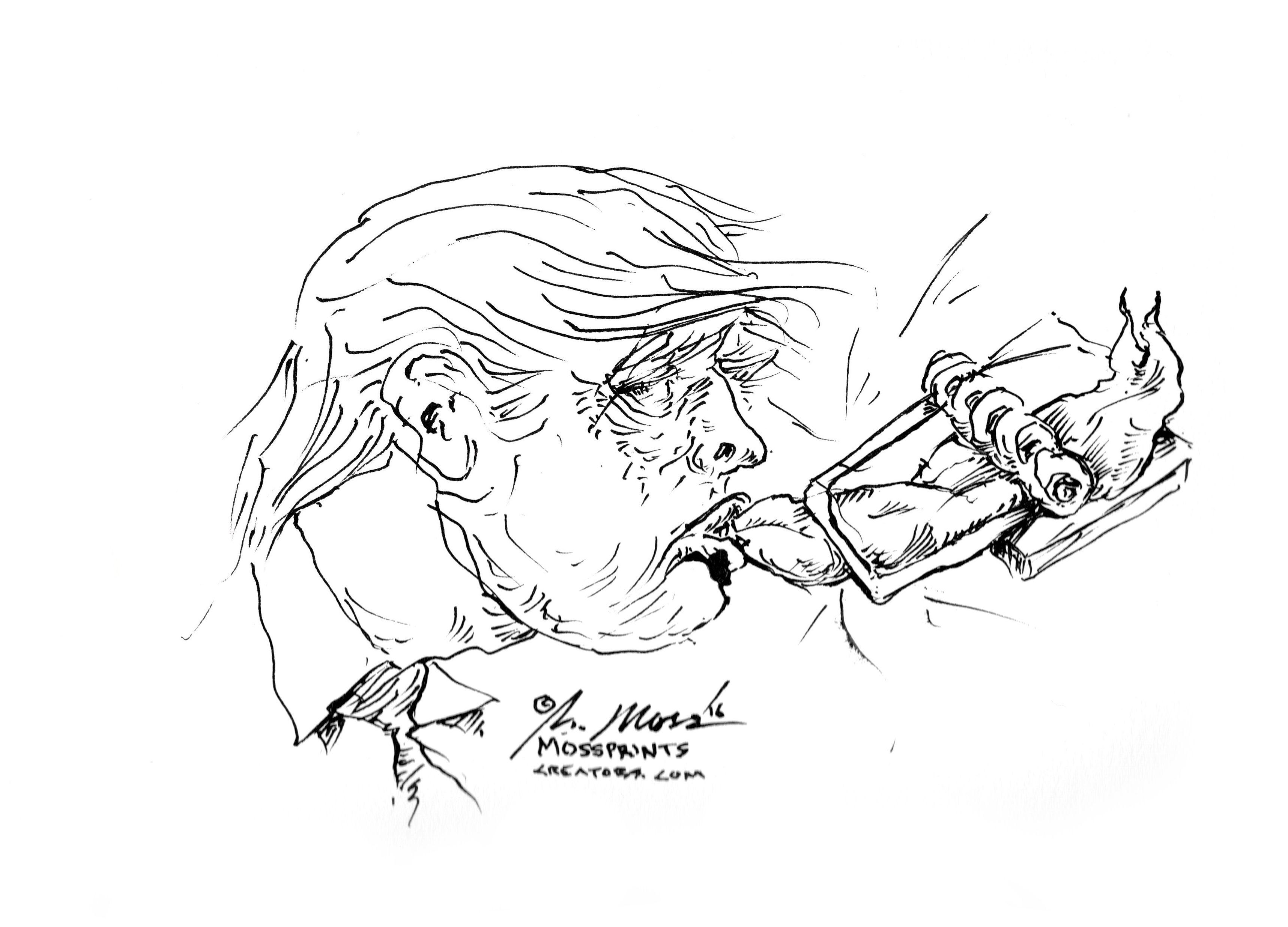3433x2470 Lauren Clark Fine Art Trump Mouse Trap