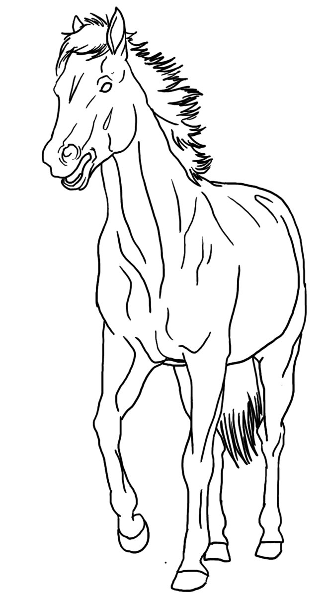 656x1216 Horse With Mouth Open Lineart Public Domain By Allicorn