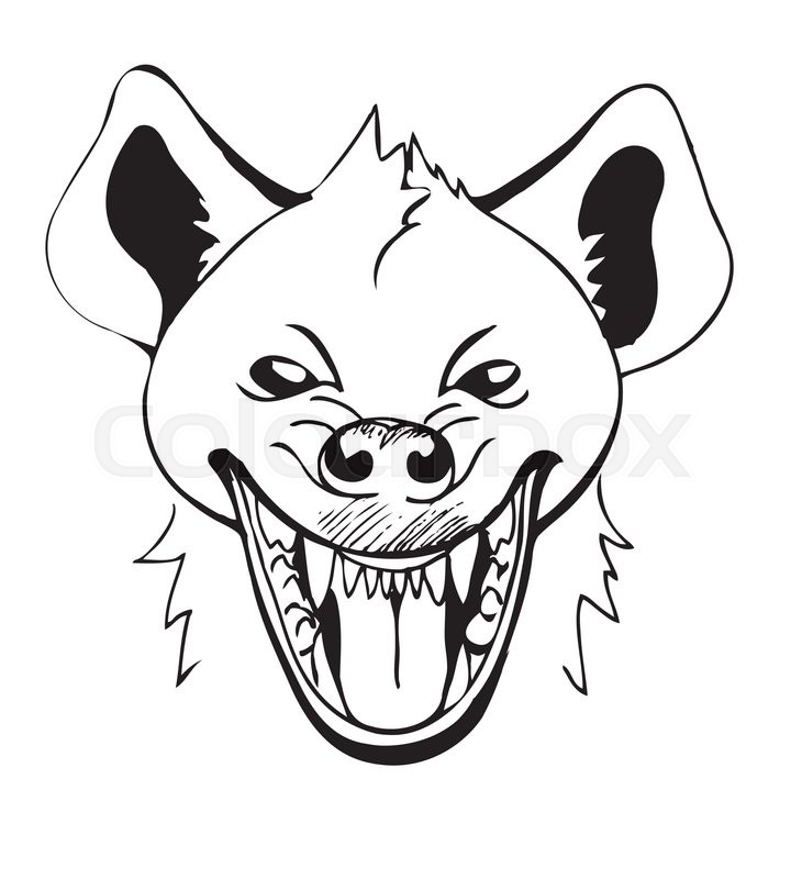 730x800 Laughing Hyena's Head With Open Mouth, Sketch Stock Vector