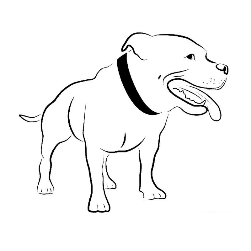 800x800 Pitbull Mouth Open Drawing Outline Sticker (6.7 X 5.7) Barking