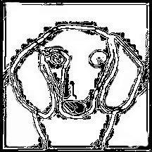 216x216 How To Draw A Dachshund