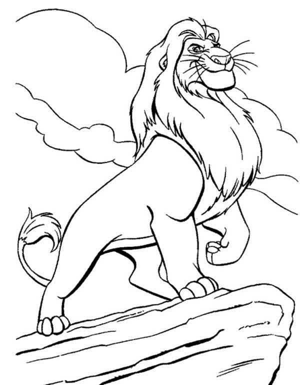 Mufasa Drawing